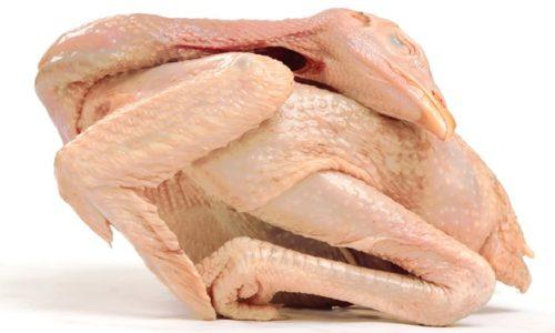 Jual Karkas Ayam Joper √ Harga Murah √ Berkualitas