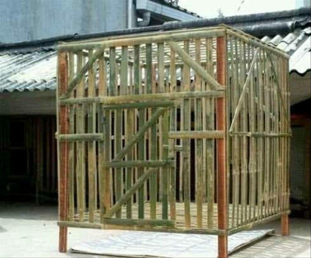 kandang_ayam_bambu-6763762
