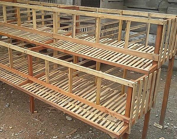 kandang-baterai-bambu-ayam-petelur-min-1-1061322